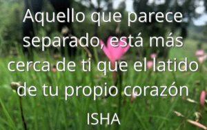 Isha – Frase del día 335
