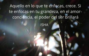 Isha – Frase del día 354